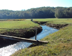 footlog and Turtletown Creek