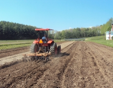 Taylor spring plowing